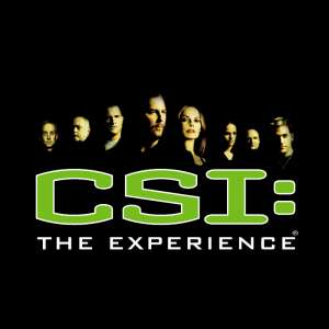 mgm-grand-entertainment-attractions-csi-the-experience-logo-@2x.png.image.300.300.high